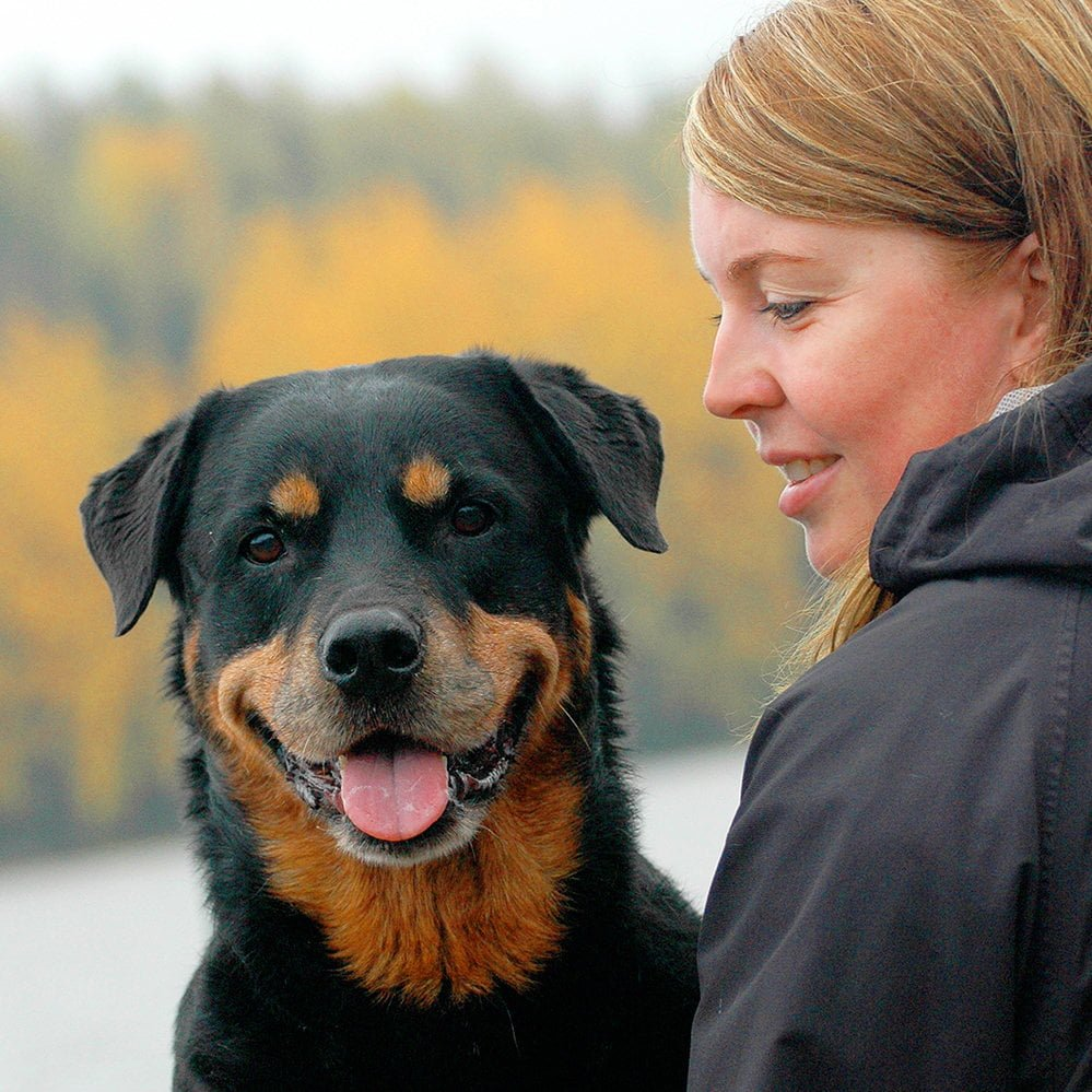 Nutrolin_Happy_Customer_arthritis_rottweiler