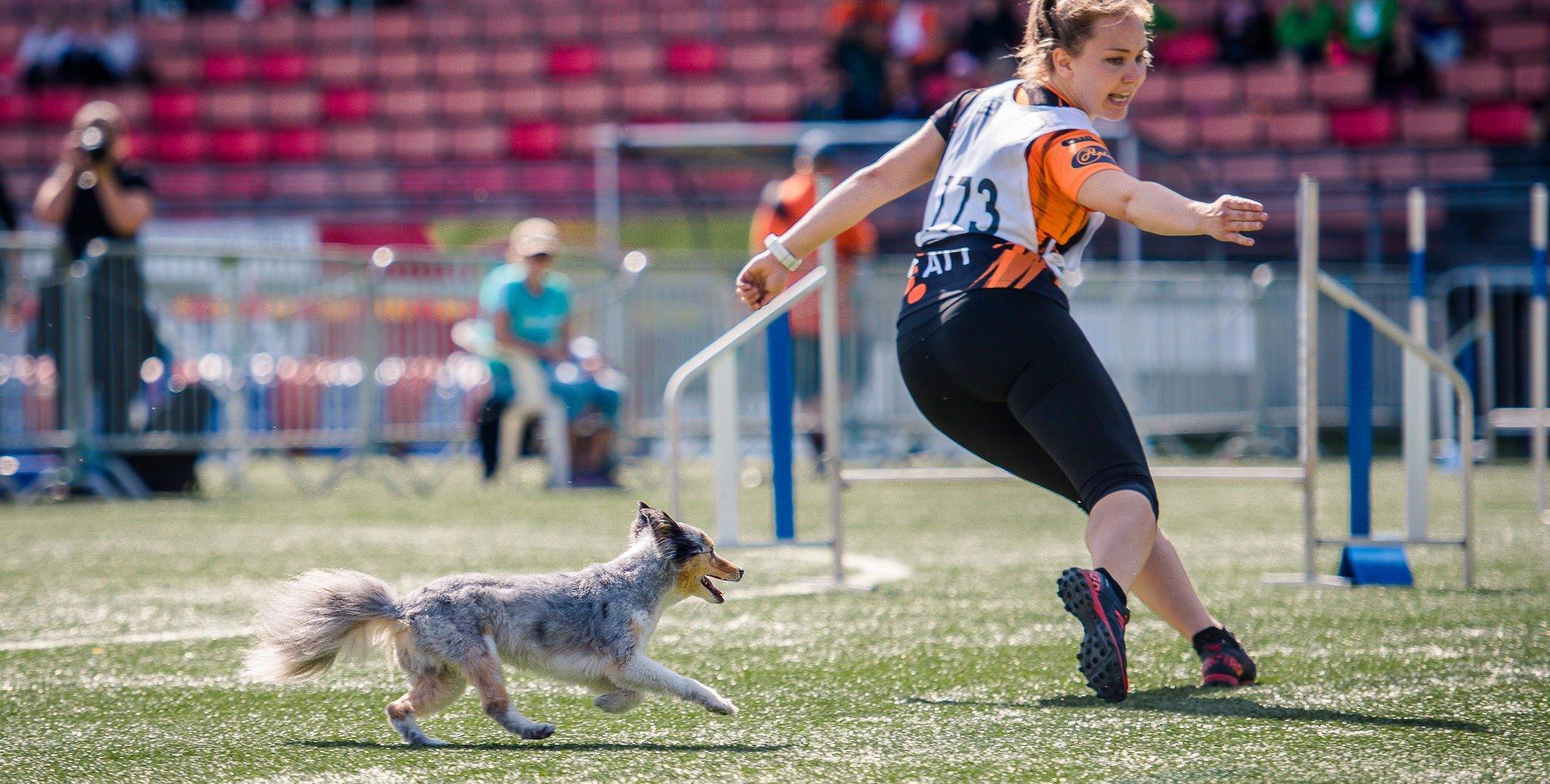 Nutrolin_agility_dog_health4